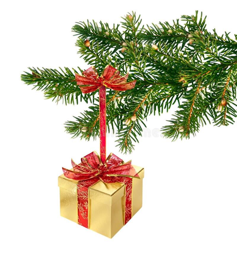 Regalo de Navidad en la ramificación fotografía de archivo libre de regalías