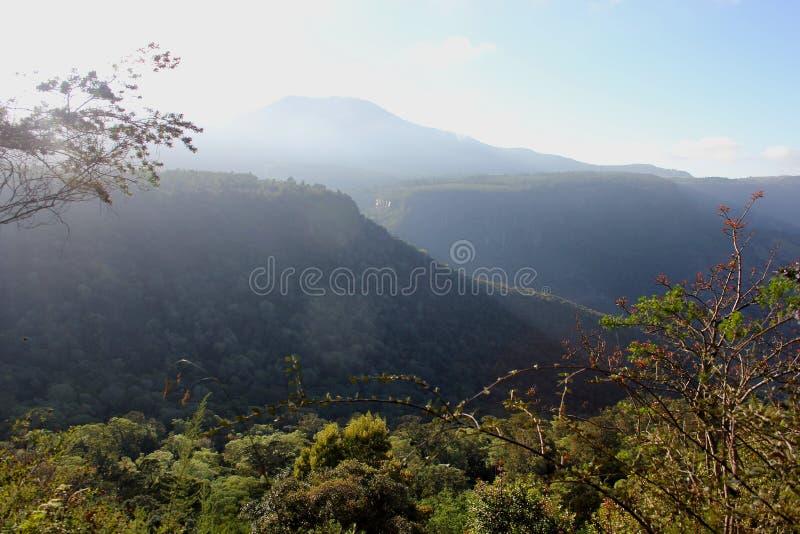 Regard au-dessus d'une gorge dans la région de Hogsback photo stock