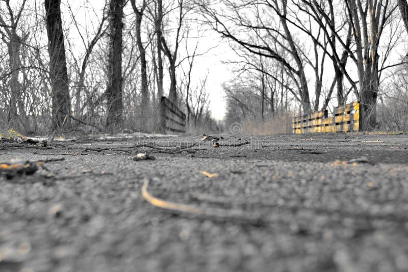 Regard en bas du chemin. photos stock