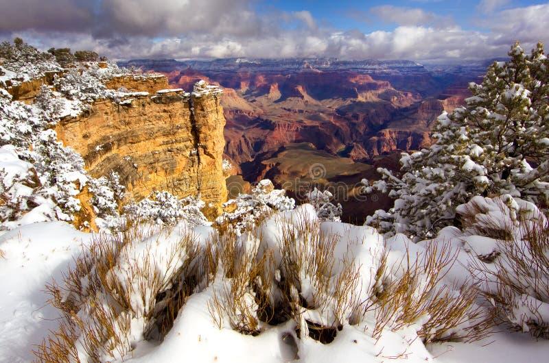 Regard profondément dans Grand Canyon de la jante du sud après une tempête égalisante de neige image libre de droits