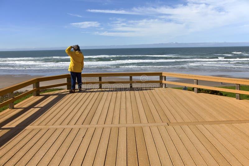 Regard sur la côte de l'Orégon de plage photo libre de droits