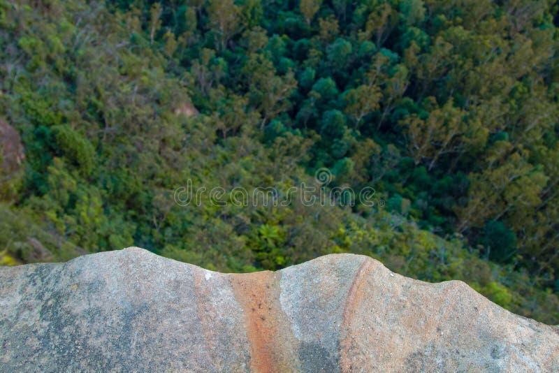 Regard vers le bas de la falaise de roche dedans sur des arbres et des dessus d'arbre images libres de droits