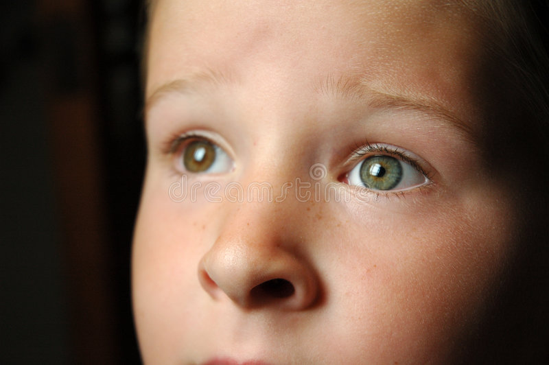 Regarder des yeux fixement photos libres de droits