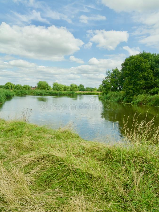 Regarder la rivière photo stock