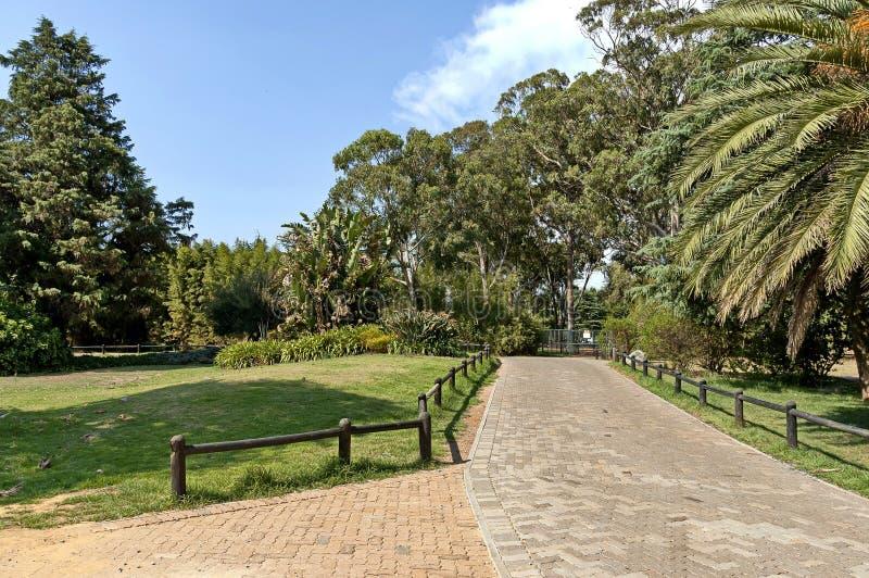 Regardez de la promenade du zoo de Johannesburg photo stock