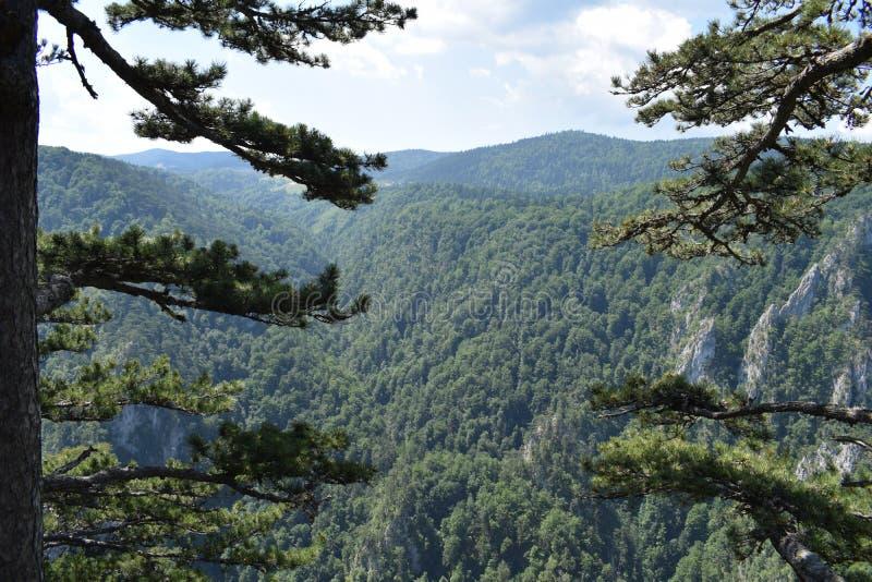 Regardez le canyon de Raca images stock