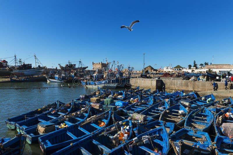 Regardez le port de pêche d'Essaoira avec les bateaux de pêche traditionnels dans la côte atlantique du Maroc, Afrique du nord photos stock