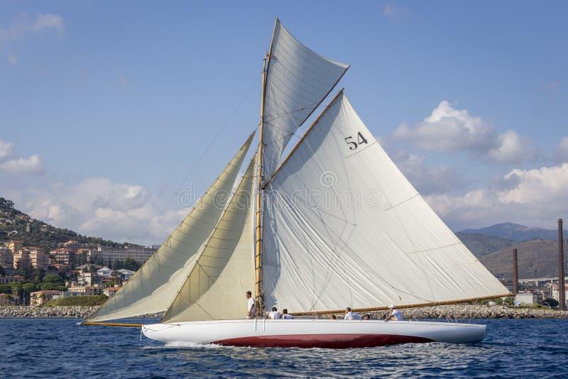 """Regata classica dell'yacht - uncini la taglierina ' """" AUTENTICO; immagine stock libera da diritti"""