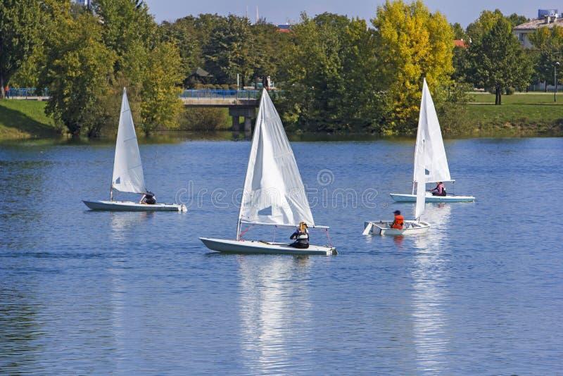 Regatta żeglowanie małe łódki fotografia stock