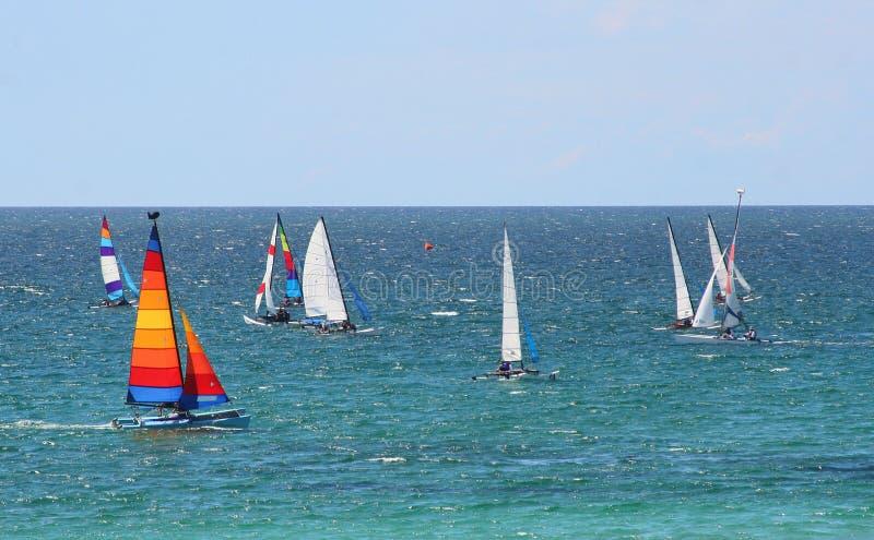 regatta стоковые изображения