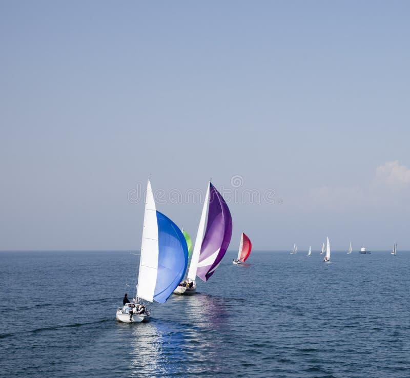 regatta 2 стоковое фото rf