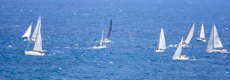 regatta fotografia de stock royalty free