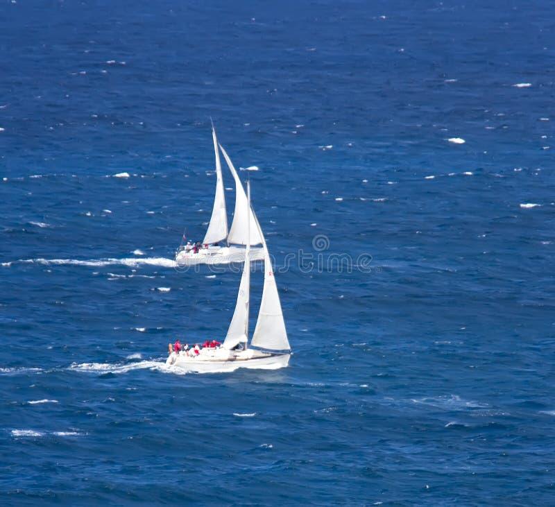 regatta fotografia de stock
