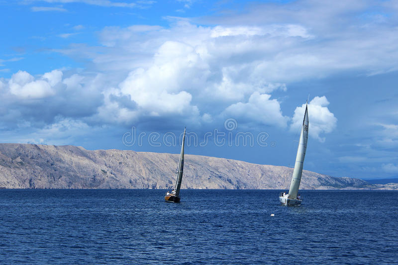 regatta photo stock