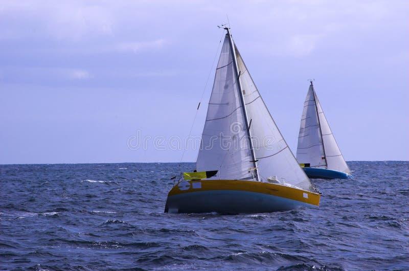 regatta стоковое изображение