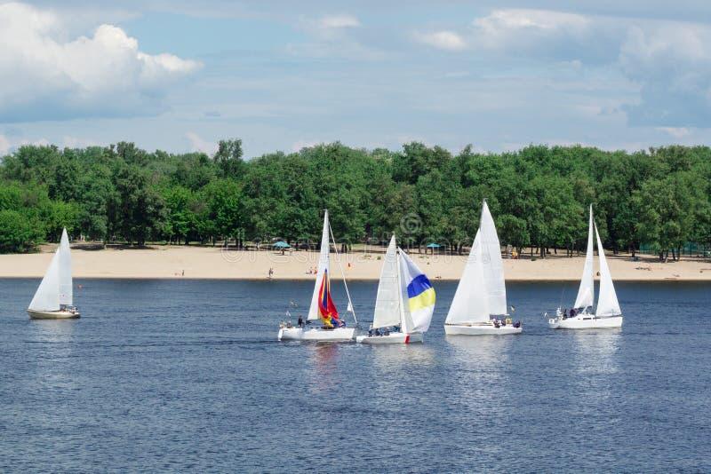 Regatta auf Seefluss-Segeljachtbooten mit weißen Segeln und gennakers, reflektierte Himmel im Wasser lizenzfreie stockfotografie