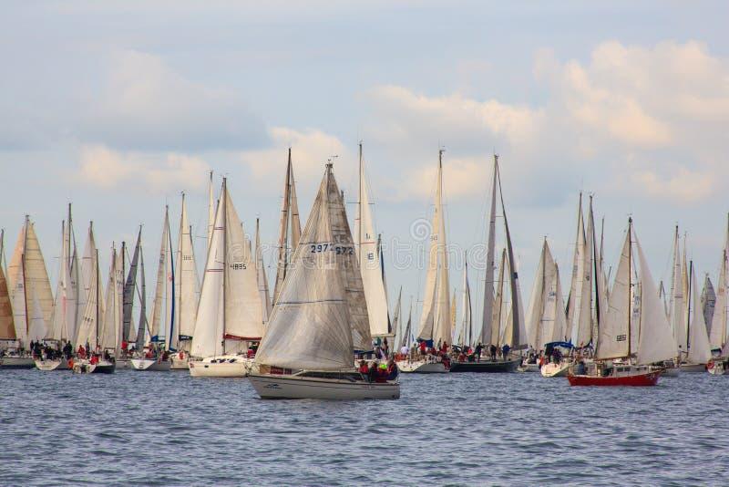 Regatta de Barcolana, Trieste foto de stock royalty free