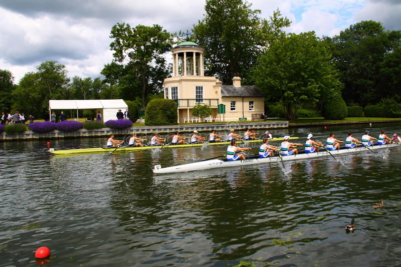 regatta henley королевский стоковая фотография