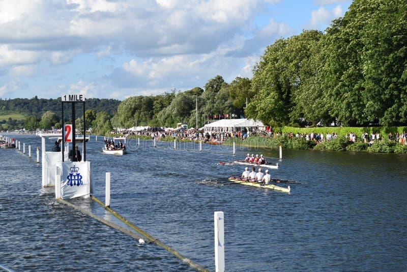 Regatta royal de Henley photos stock