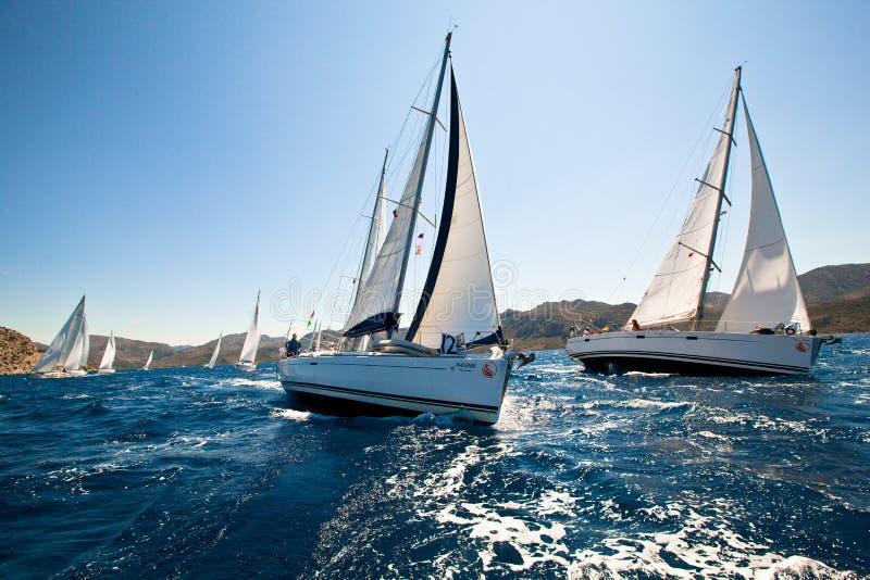 Regatta Sailing стоковое фото rf