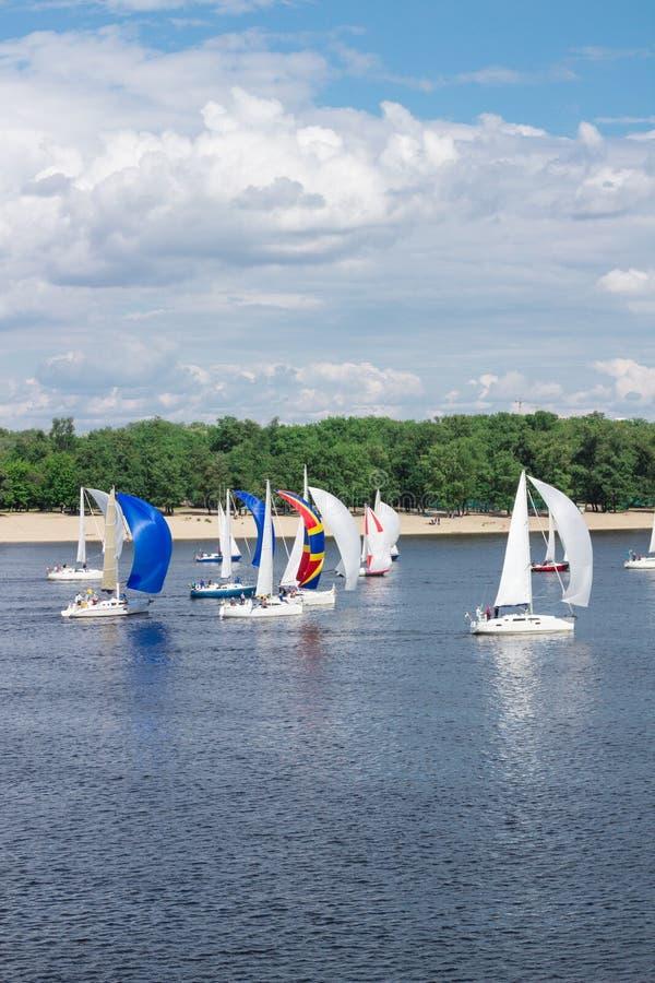 Regatta von Seefluss-Segeljachtbooten mit den weißen und mehrfarbigen Segeln, reflektierte Himmelwolken im Wasser lizenzfreie stockbilder