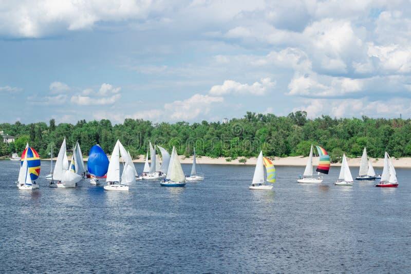 Regatta von Seefluss-Segeljachtbooten mit weißen Segeln und mehrfarbigen gennakers, reflektierte Himmelwolken im Wasser stockfotos