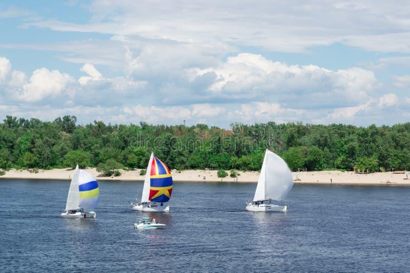 Regattawettbewerb auf Seefluss-Segeljachtbooten mit Segeln und mehrfarbigen gennakers, reflektierte Himmel im Wasser stockbilder