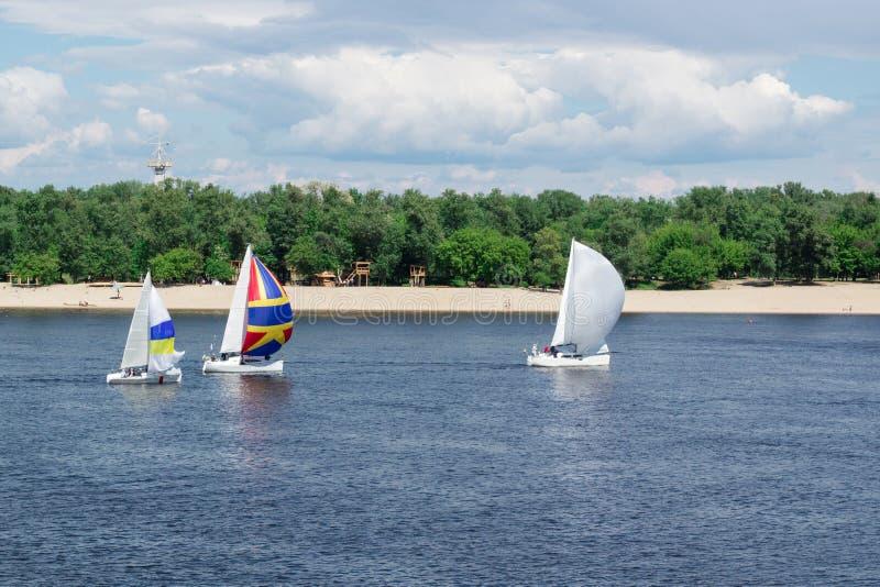 Regattawettbewerb auf Seefluss-Segeljachtbooten mit weißen Segeln und gennakers, reflektierte Himmel im Wasser stockbild