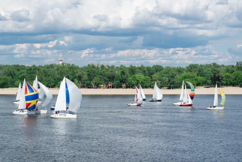 Regattawettbewerb von Seefluss-Segeljachtbooten mit Segeln und mehrfarbigen gennakers, reflektierte Himmelwolken im Wasser lizenzfreies stockfoto