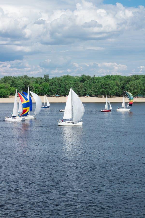 Regattawettbewerb von Seefluss-Segeljachtbooten mit weißen Segeln, reflektierte Himmelwolken im Wasser stockbild
