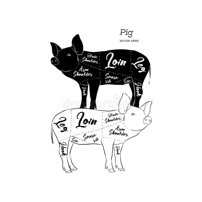Regeling en gids - Varkensvlees Uitstekende typografische hand-drawn Vector stock illustratie
