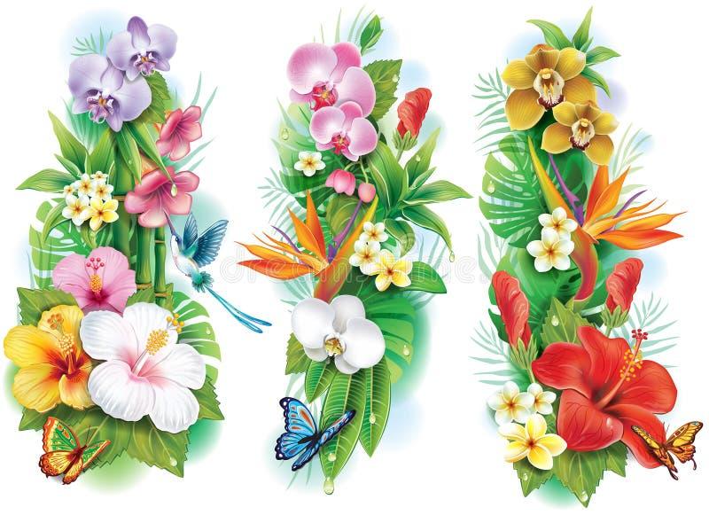 Regeling van tropische bloemen vector illustratie