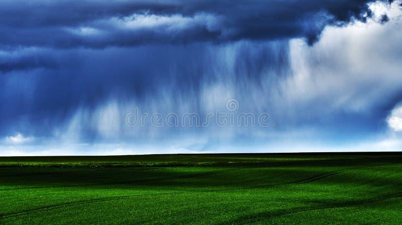 Regen über dem Feld lizenzfreie stockfotos