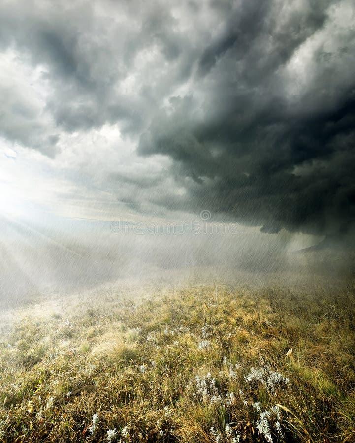 Regen auf dem Gebiet lizenzfreie stockfotos