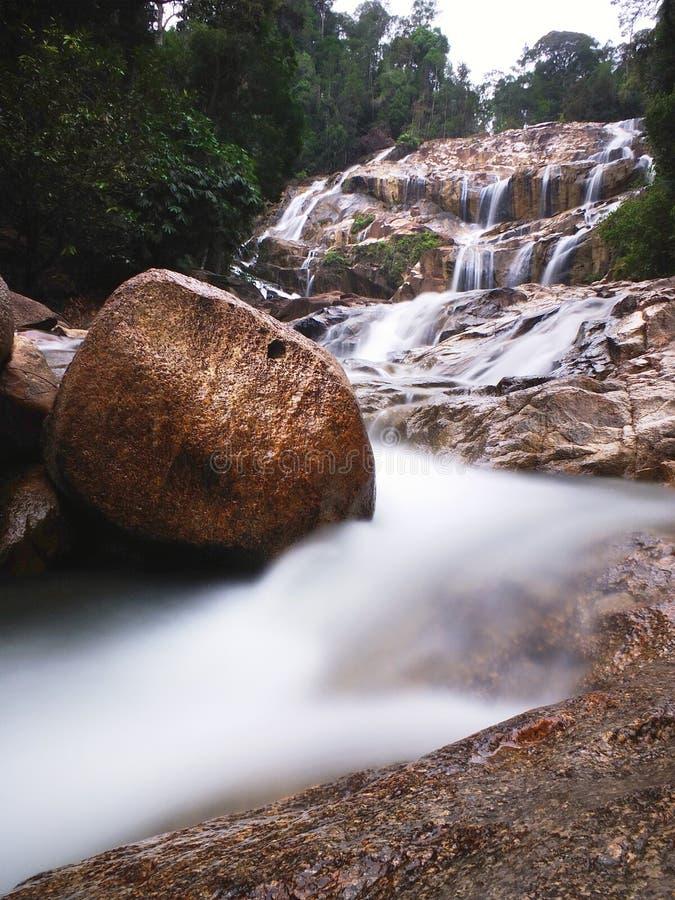 Regen Forest Waterfall royalty-vrije stock foto