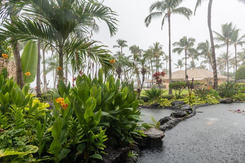 Regen im Paradies, Oahu lizenzfreie stockfotografie
