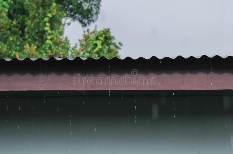 regen op dak van blokhuis, regenachtig seizoen stock afbeelding