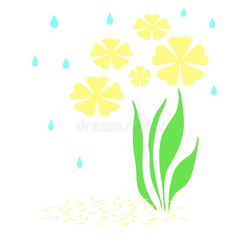 Regen op gele bloemen vector illustratie