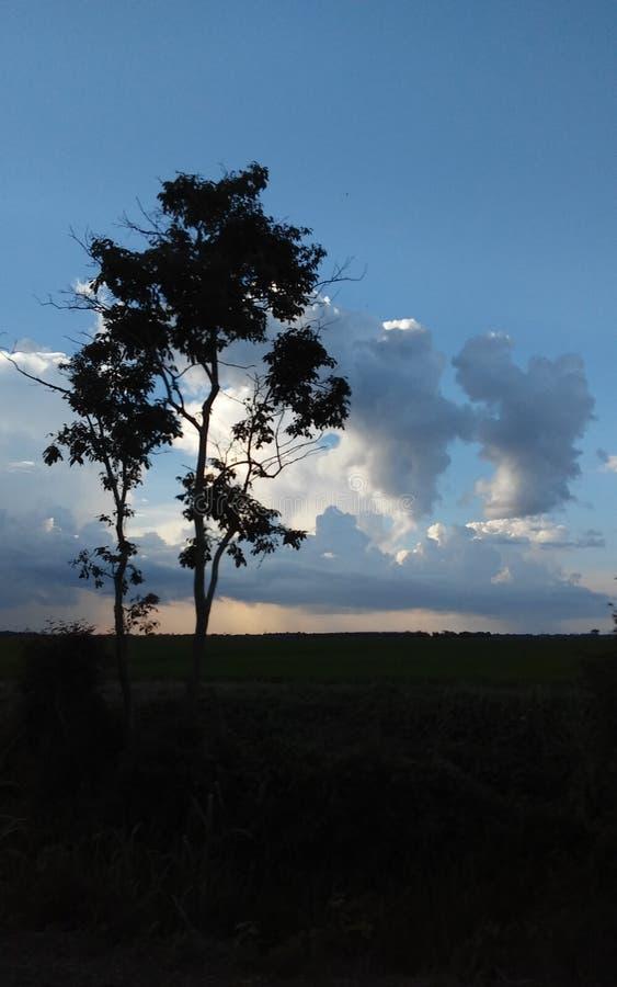 Regen/Sonnenschein stockfotos