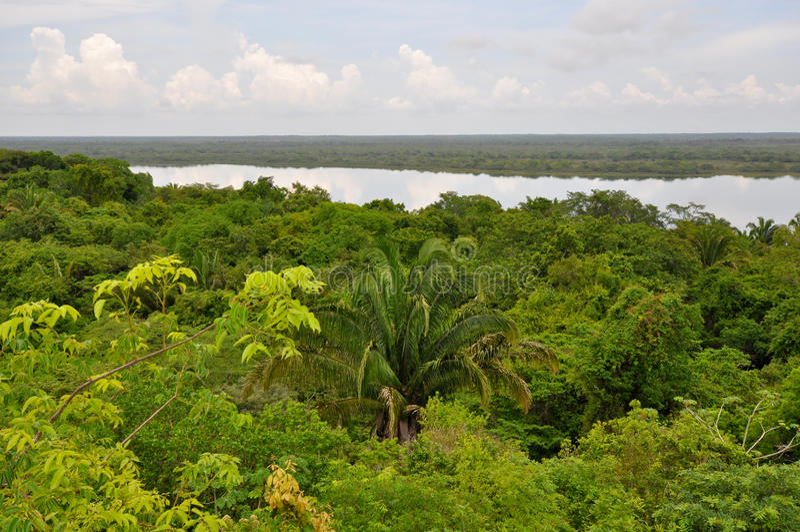 Regen-Wald-und Lagune-Ansicht in Zentralamerika lizenzfreies stockfoto