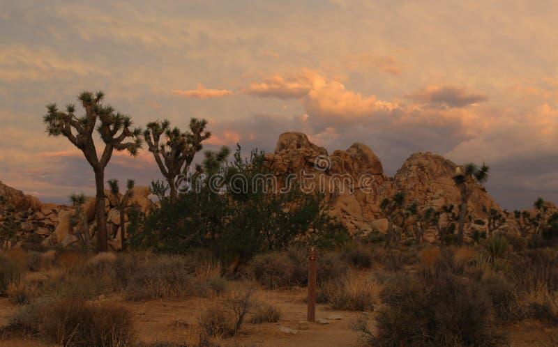 Regen-Wolken, die bei Joshua Tree National Park, Kalifornien einziehen stockbild