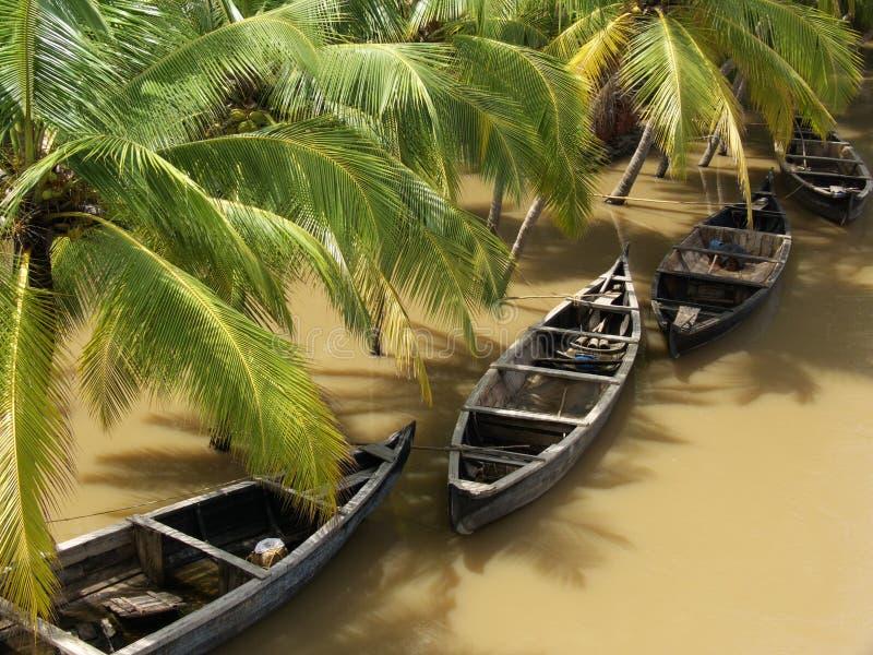Regenachtig Kerala Royalty-vrije Stock Afbeeldingen