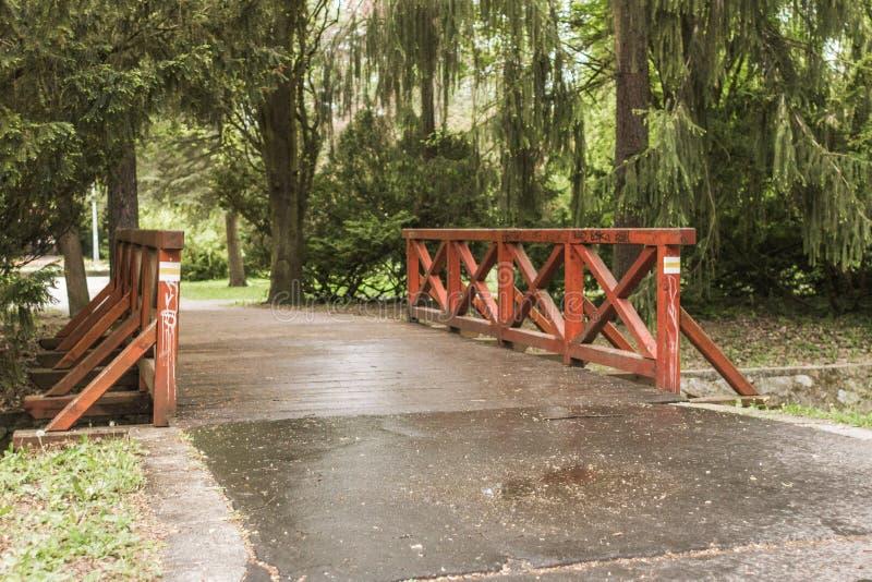 Regenachtig landschap met oude houten brug in het stadspark royalty-vrije stock foto