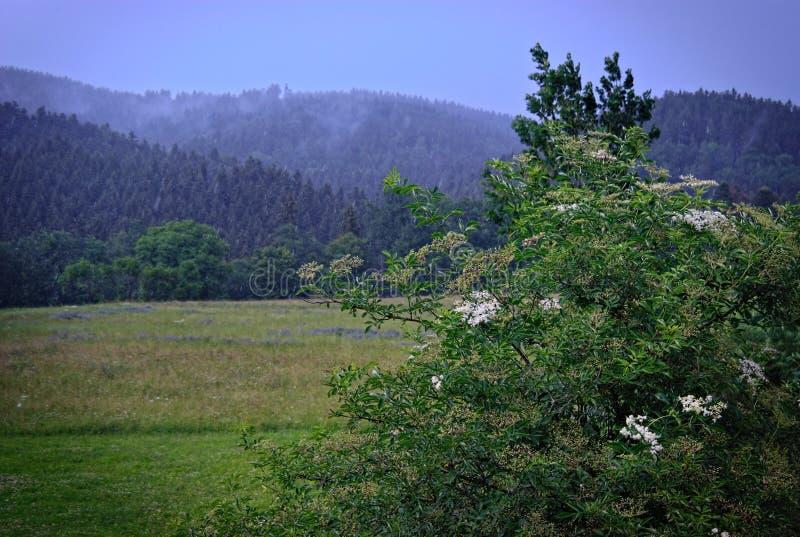 Regenachtig landschap in swabian alb royalty-vrije stock afbeelding