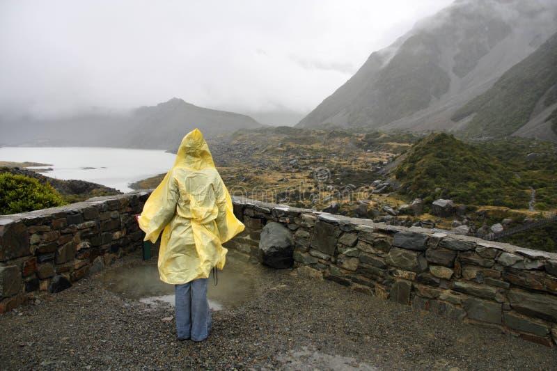 Regenachtig Nieuw Zeeland royalty-vrije stock foto's