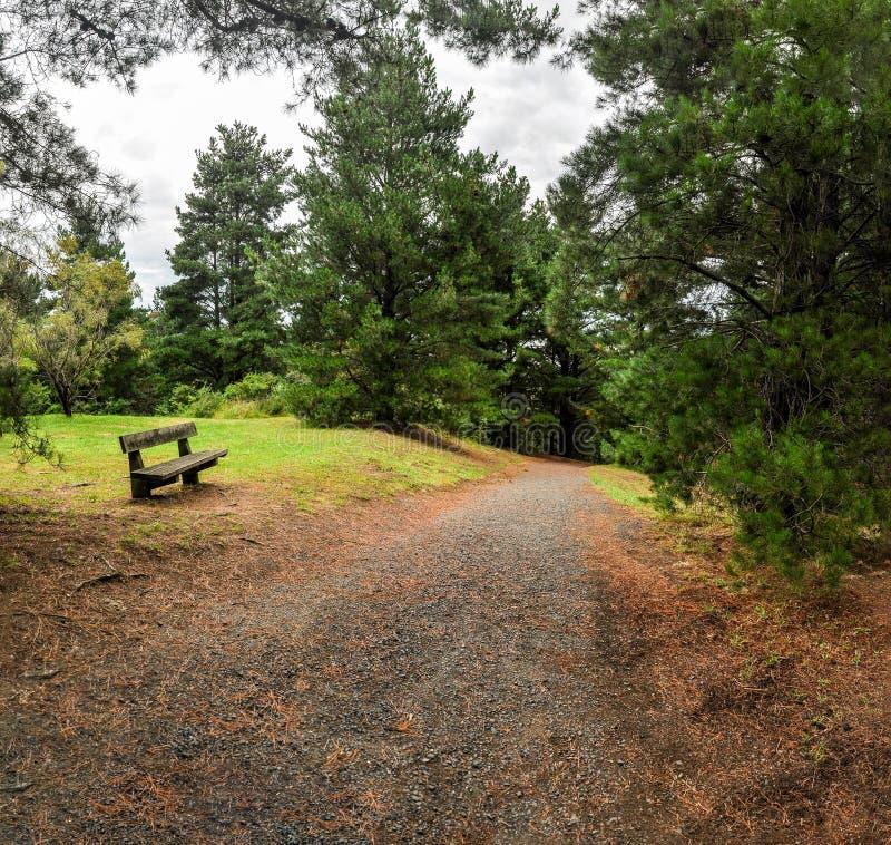 Regenachtige dag in het Park Wilson australië stock fotografie