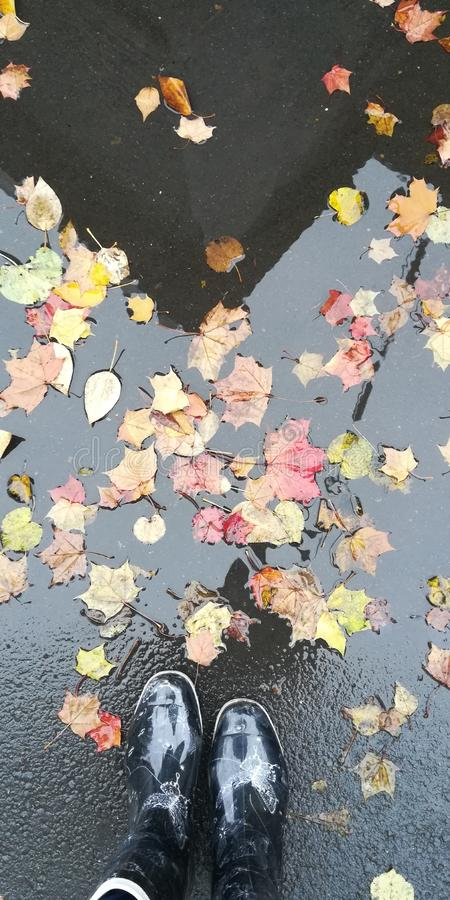 Regenachtige de herfstdag royalty-vrije stock fotografie