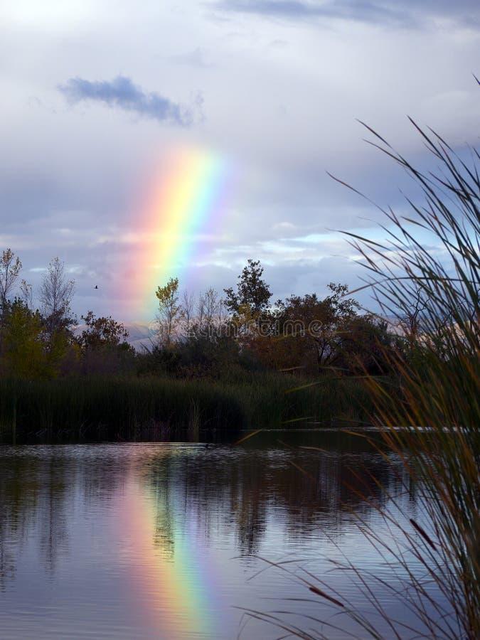 Regenbogen über dem See stockfotografie