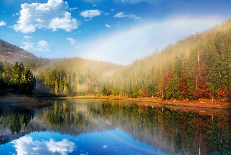 Regenbogen über dem See im nebeligen gezierten Wald stockfotografie