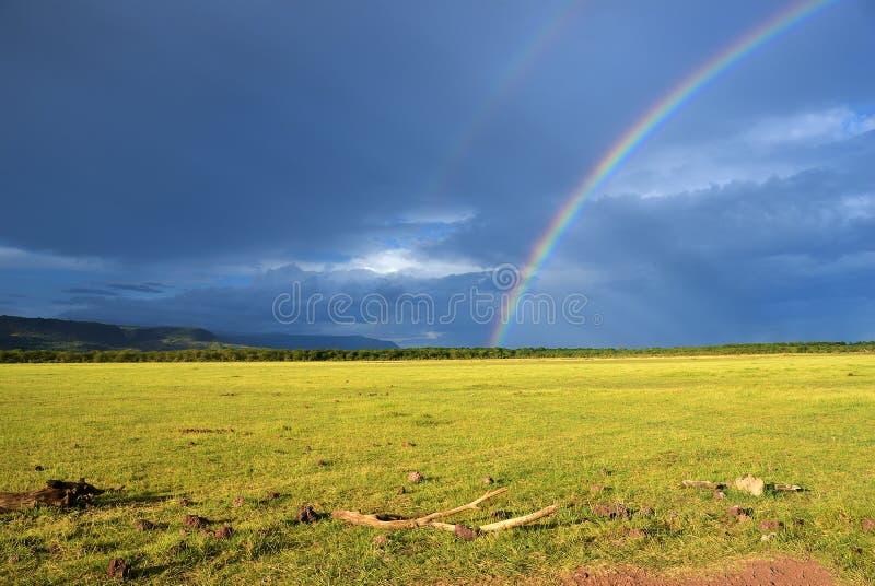 Regenbogen über Savanne, Tansania, Afrika stockfoto